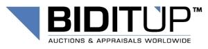 Industrial Assets Corp - Biditup Auctions Worldwide