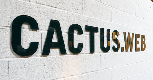 201310211723 cactus wall 2