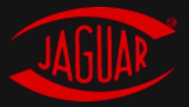 PALFER-JAGUAR