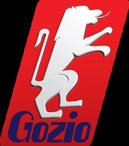 GOZIO TRANSFER